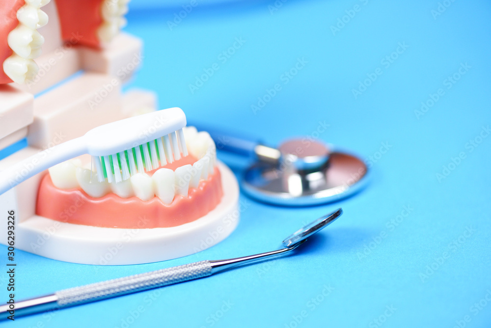Fototapeta Dental care concept - dentist tools with dentures dentistry instruments and dental hygiene and equipment checkup with teeth model and mouth mirror oral health