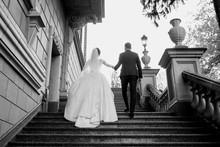 Wedding Couple (woman And Man)...