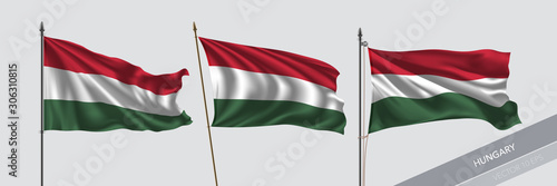 Leinwand Poster Set of Hungaria waving flag on isolated background vector illustration