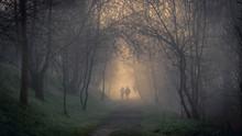 Pareja Caminando Por Un Paseo En El Que Los árboles Forman Un Túnel