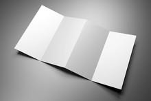 Leaflet/ Brochure/ Leaflet Moc...