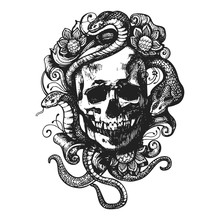 Skull With Flowers And Snakes.