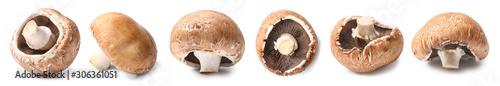 Fotografia Fresh champignon mushroom on white background