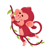 Cute Little Red Monkey Hanging...
