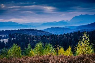 Fototapeta Las Romanian Autumn Landscape