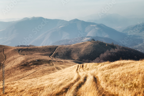 Foto auf Leinwand Dunkelgrau Yellow grass trembling in the wind in autumn mountains