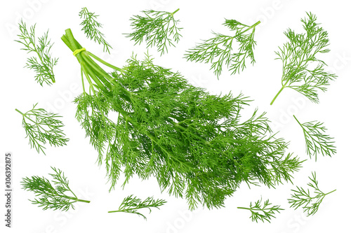 Fotografia fresh green dill isolated on white background. top view