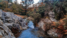 Stream In The Mountains In Aut...