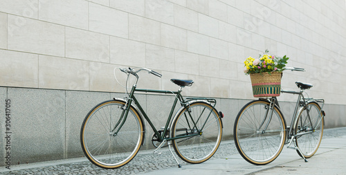 Recess Fitting Bicycle bike