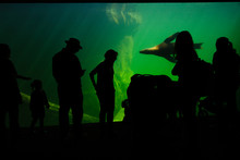 Silhouettes Of A Group Of Peop...