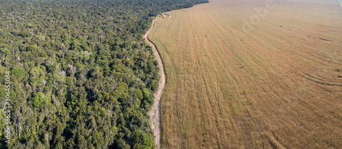 Fényképezés Panoramic drone aerial view of Xingu Indigenous Park territory and soybean farms in the Amazon rainforest, Mato Grosso, Brazil