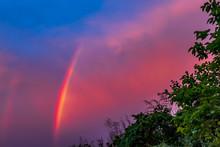 雨上がり後の夕空に出現した虹