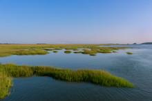 Marsh In The Brunswick, GA Area
