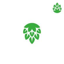 Green Hop. Vector Illustration