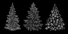 Set Of Christmas Tree Graphic Art With Line Doodle Hand Drawn Vector Illustration Isolated On Black