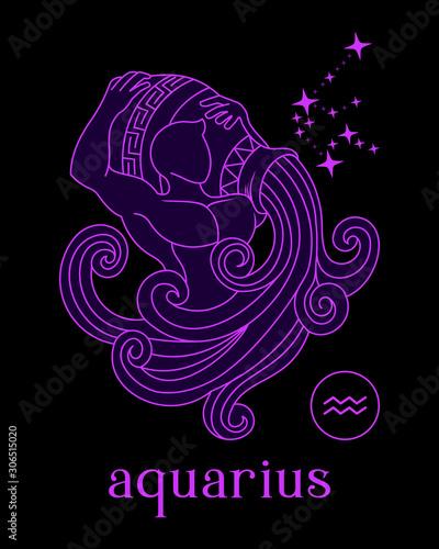 silhouette a beautiful and elegant aquarius zodiac sign vector Canvas Print