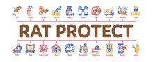 Rat Protect Minimal Infographic Web Banner Vector. Rat Control Service, Human Silhouette And Protective Mask, Gloves And Spray Concept Illustrations
