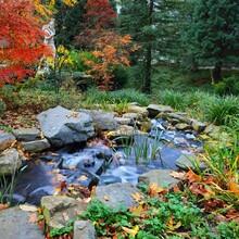 Colourful Decorative Waterfall...