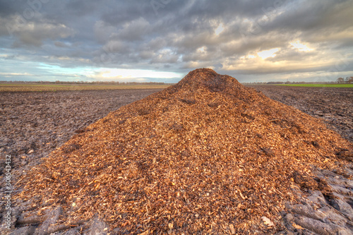 Heap of manure mixed with sawdust and woodchips, used as animal bedding, under a Fototapeta