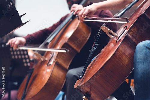 Musicians, orchestra and musical instruments - 306543613