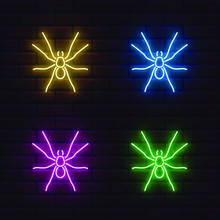 Set Of Colorful Neon Spiders