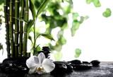 Fototapeta Kuchnia - Grean bamboo leaves over zen stones and orchid flower on white background
