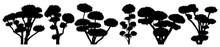 Garden Bonsai Niwaki. Decorati...