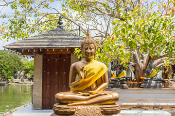 Fototapeta Do Spa statue of buddha in Sri Lanka