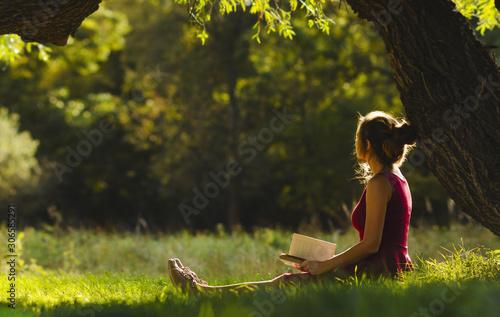 Fotografia, Obraz sunny portrait of a beautiful girl sitting on green glade under an arch of tree