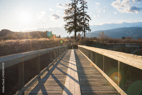 Trestle bridge on the Kettle Valley Rail Trail in Penticton Tapéta, Fotótapéta