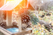 A Winter Bird Feeder With Christmas Decorations Of Fir Tree Branch And Cones