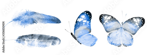 Fototapeta Two watercolor butterflies and feathers, isolated on white background obraz