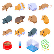 Hamster Icons Set. Isometric S...