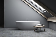 Attic Gray Bathroom Interior W...