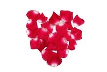 A Heart Sign Of Red Rose Corollas On White Isolated Background With Copy Space