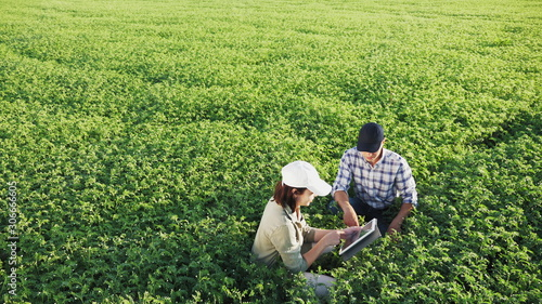 Top view of two young farmers working in a chickpea field, talk and use the tabl Canvas Print
