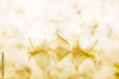 fairytale-wallpaper-with-transparent-white-leaves