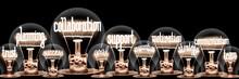 Light Bulbs With Collaboration...