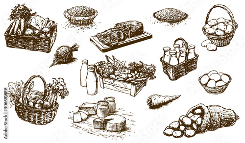 farm products - food, set of hand-drawn illustrations (vector)