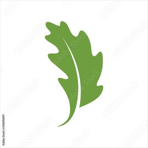Fotografía leaf design icon logo vector