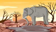 Deforestation Scene With Skinn...