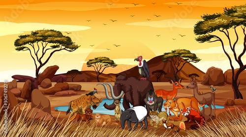 Foto auf Leinwand Kinder Scene with many animals in the field