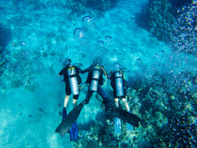 Group Of Scuba Divers Swimming Under Water. Summer Concept