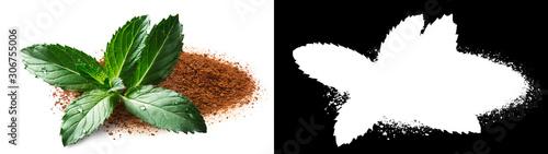 Mint and cinnamon, clipping paths Fototapeta