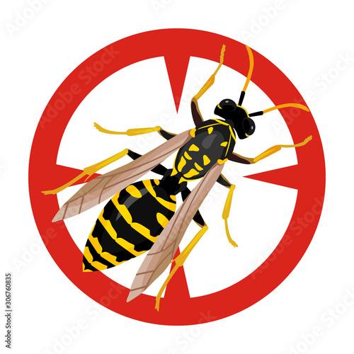 Fényképezés Insect wasp vector icon
