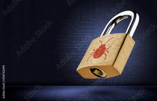 Cuadros en Lienzo Software security concept