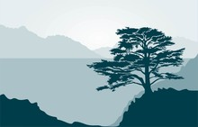 Landscape With Lebanese Cedar Tree, Sea And Mountains