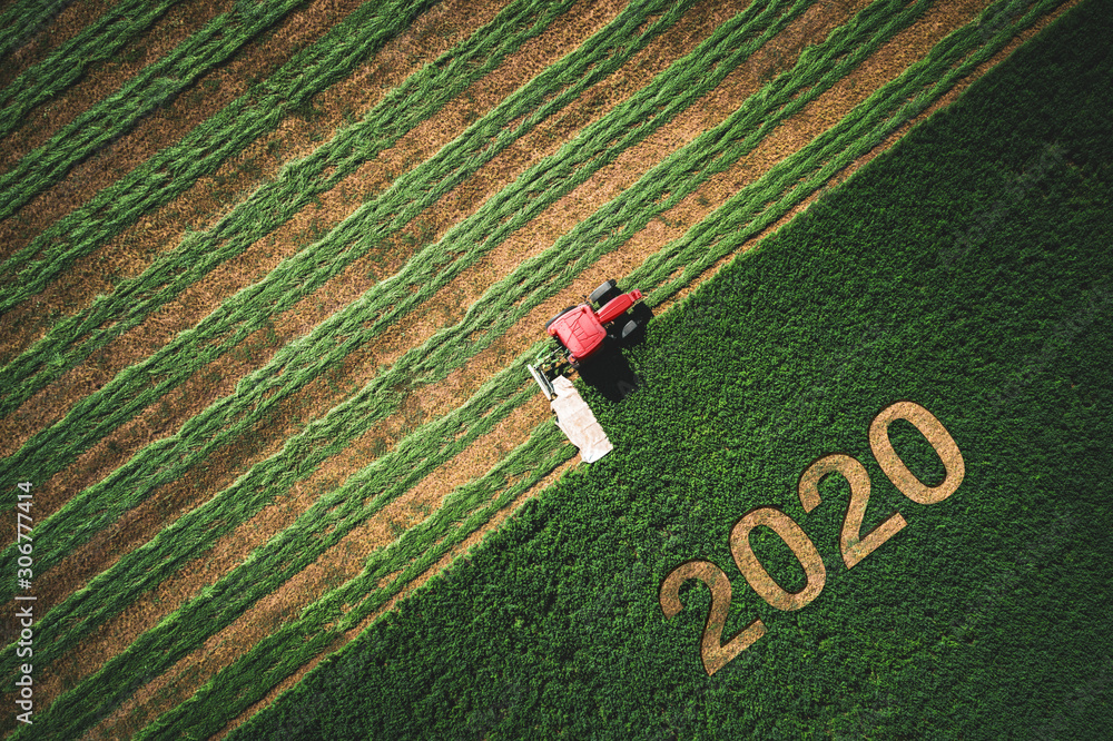 Fototapeta 2020 Happy Ney Wear concept and red tractor mowing green field