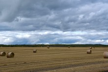 Storm Clouds Over A Field With Round Bales