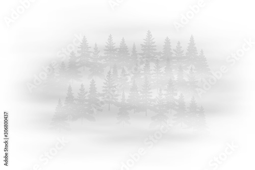 Fototapety, obrazy: Fog in the forest, black and white landscape, vector illustration, EPS10